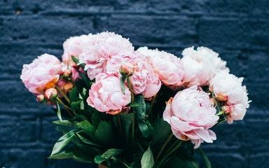 Бизнес по франшизе цветочного магазина: что нужно знать