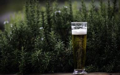Магазин разливного пива по франшизе: сколько стоит и что нужно знать?
