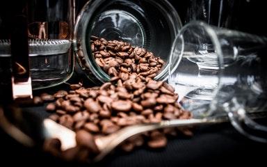 Открыть бизнес «кофе с собой»: что нужно знать